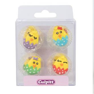 Royal Icing Cute Baby Chick (12)