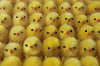 Easter Chenille Chicks - Yellow, 32mm - Box of 84