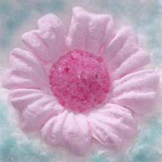 Daisy Pink Icing Flower 40mm (32)